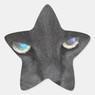 Gato gris del gatito de la diversión con los ojos pegatina en forma de estrella