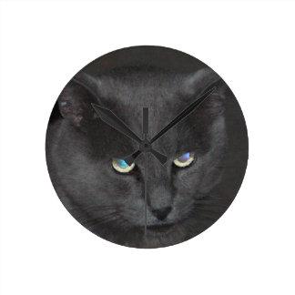 Gato gris del gatito de la diversión con los ojos  reloj de pared
