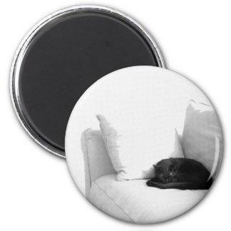 Gato gris el dormir en el sofá blanco imán de frigorifico