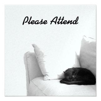 """Gato gris el dormir en el sofá blanco invitación 5.25"""" x 5.25"""""""