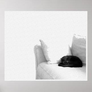 Gato gris el dormir en el sofá blanco póster