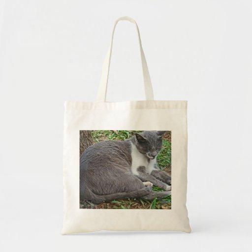 Gato gris en el parque bolsa tela barata