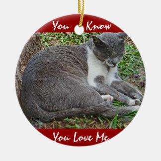 Gato gris en el parque adorno redondo de cerámica