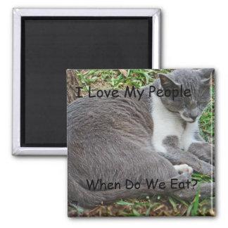 Gato gris en el parque iman de nevera