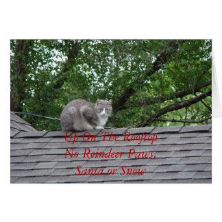 Gato gris en el tejado, encima en del RooftopNo Tarjeta De Felicitación