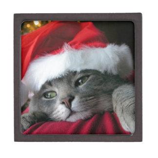 Gato gris hermoso del gatito del navidad cajas de regalo de calidad