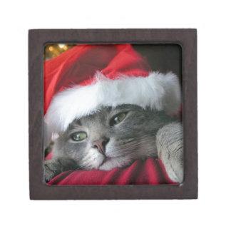Gato gris hermoso del gatito del navidad caja de regalo de calidad