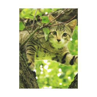 Gato gris lindo en un árbol impresión en lona