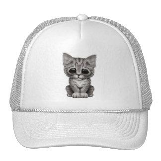 Gato gris lindo triste del gatito del Tabby Gorras