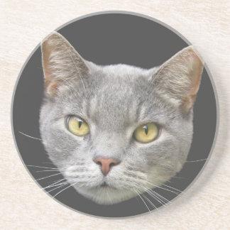 Gato gris posavasos diseño