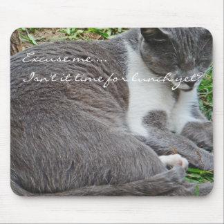Gato gris tapete de ratón
