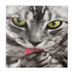 Gato gris tejas  cerámicas