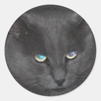 Gato gris único con los ojos coloreados pegatina redonda