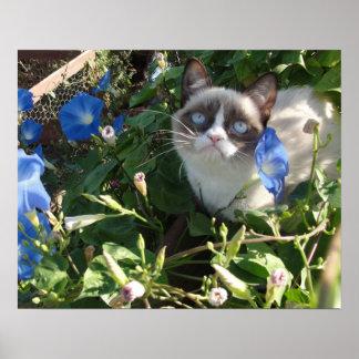 Gato gruñón en el poster de las correhuelas 20x16