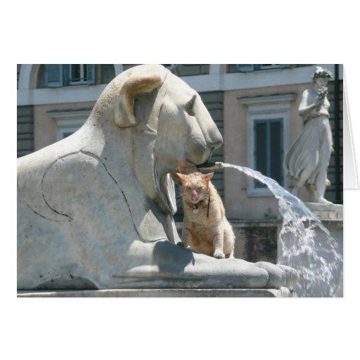 Gato gruñón en Roma, Piazza del Popolo, Italia Tarjeta De Felicitación