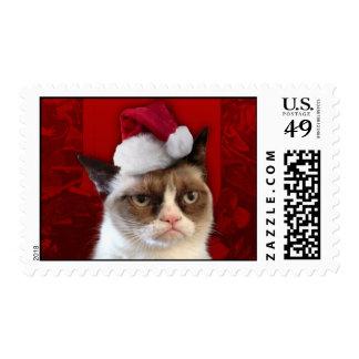 Gato gruñón en un gorra de Santa