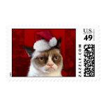 Gato gruñón en un gorra de Santa Estampilla