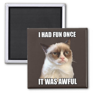 Gato gruñón - me divertía una vez imán cuadrado