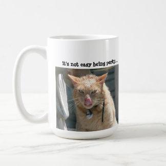 Gato gruñón, no es el ser fácil gallardo… taza