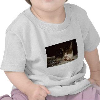 Gato hambriento para los casetes camiseta