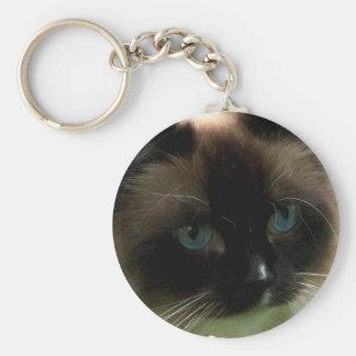 Gato hermoso de Ragdoll Llavero Personalizado