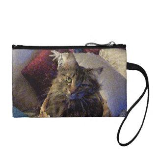 Gato hermoso del gatito del Coon de Maine del