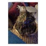Gato hermoso del gatito del Coon de Maine del Tarjeta De Felicitación