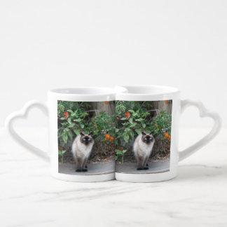 Gato Himalayan de la mezcla Set De Tazas De Café