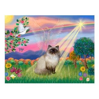 Gato Himalayan del punto del chocolate - ángel de Tarjetas Postales