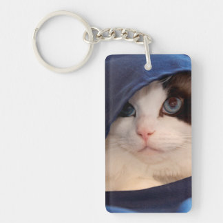 Gato humano 2 de la sociedad llaveros
