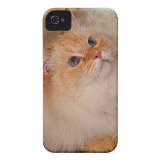 Gato humano de la sociedad Case-Mate iPhone 4 coberturas