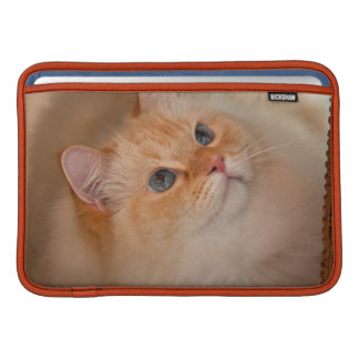 Gato humano de la sociedad fundas macbook air