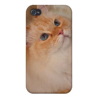 Gato humano de la sociedad iPhone 4/4S carcasas