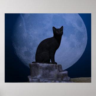 Gato iluminado por la luna póster