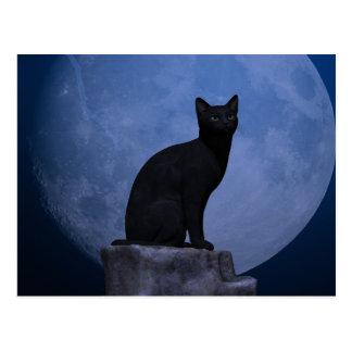 Gato iluminado por la luna tarjetas postales
