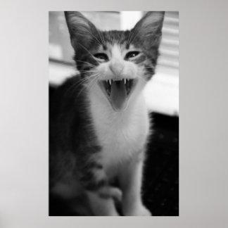 Gato Impresiones