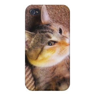 gato iPhone 4 protector