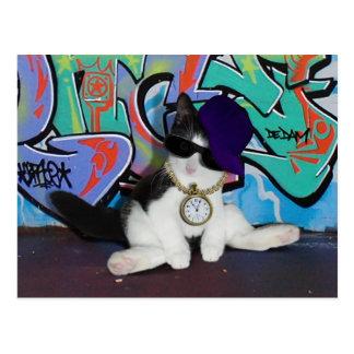 ¡Gato-itude de la actitud del gato .......! Tarjeta Postal