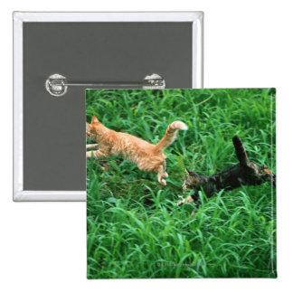 Gato japonés 3 pin cuadrado
