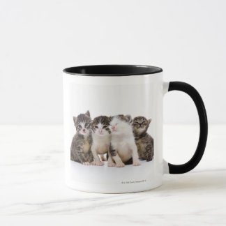 Gato japonés taza
