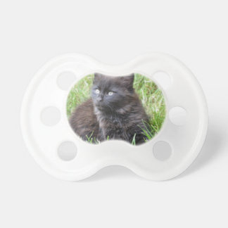 gato - jardín chupete de bebe