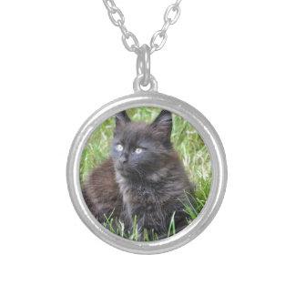 gato - jardín grimpola personalizada