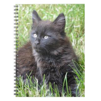 gato - jardín libros de apuntes