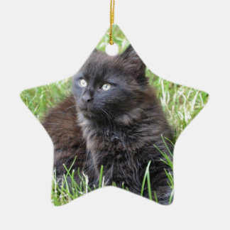gato - jardín adorno de cerámica en forma de estrella