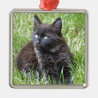 gato - jardín adorno cuadrado plateado