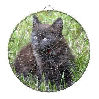 gato - jardín tablero dardos
