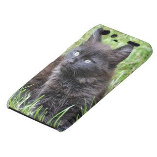 gato - jardín droid RAZR fundas