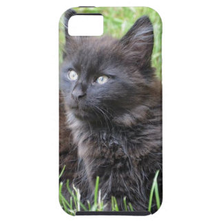 gato - jardín iPhone 5 Case-Mate funda