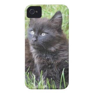 gato - jardín iPhone 4 Case-Mate funda
