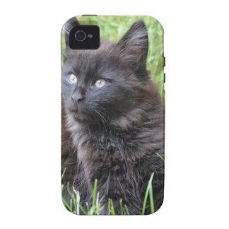 gato - jardín Case-Mate iPhone 4 funda